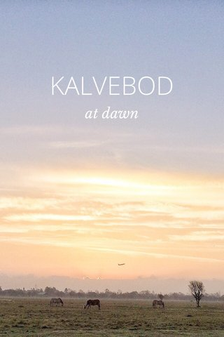 KALVEBOD at dawn