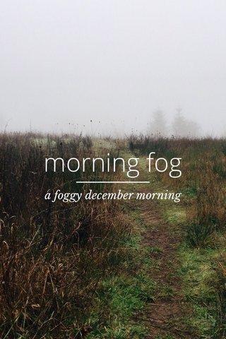 morning fog a foggy december morning