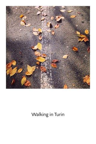 Walking in Turin