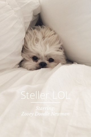 Steller LOL Starring: Zooey Doodle Newman