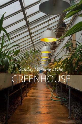 GREENHOUSE Sunday Morning at the