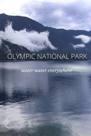 OLYMPIC NATIONAL PARK water water everywhere