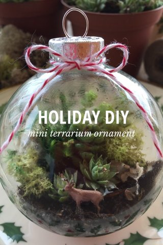 HOLIDAY DIY mini terrarium ornament