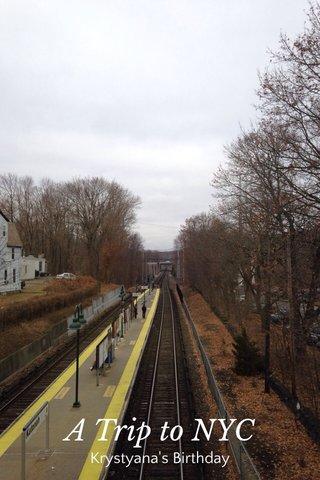 A Trip to NYC Krystyana's Birthday