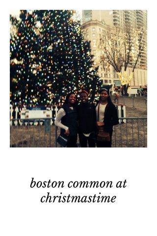 boston common at christmastime