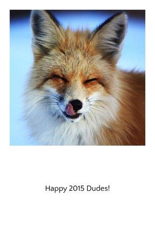 Happy 2015 Dudes!