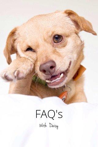 FAQ's With Daisy