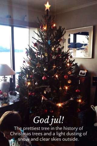 God jul! The prettiest tree in the history of Christmas trees and a light dusting of snow and clear skies outside.