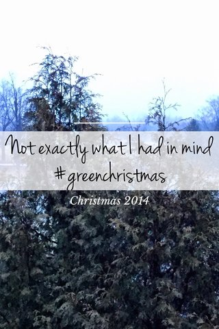 Not exactly what I had in mind #greenchristmas Christmas 2014