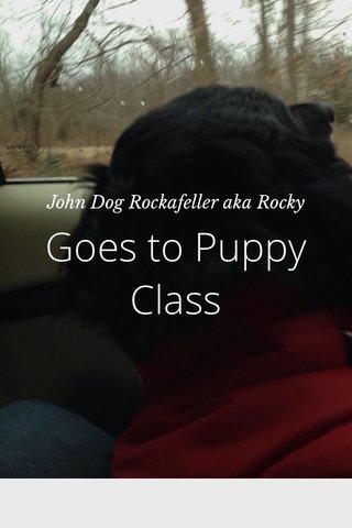 Goes to Puppy Class John Dog Rockafeller aka Rocky