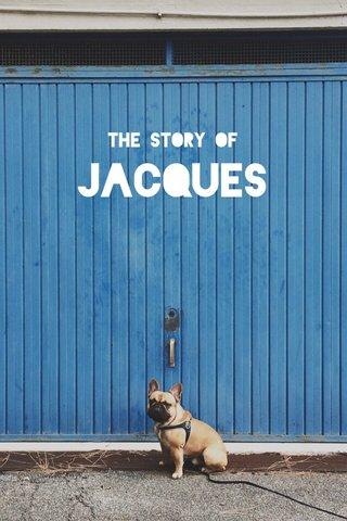 JACQUES The Story of