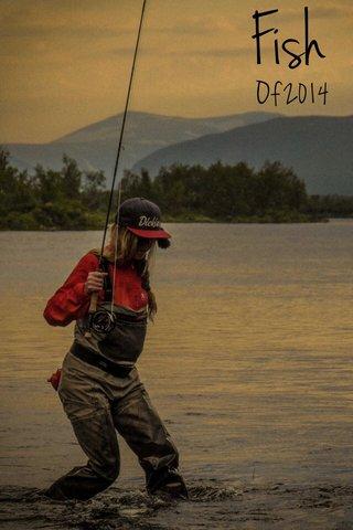 Fish Of 2014