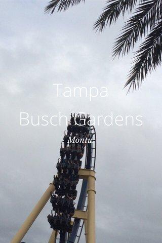 Tampa Busch Gardens Montu.