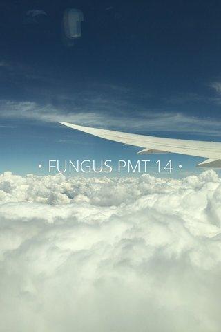 • FUNGUS PMT 14 •