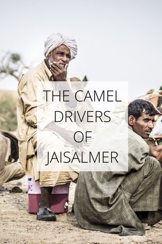 THE CAMEL DRIVERS OF JAISALMER
