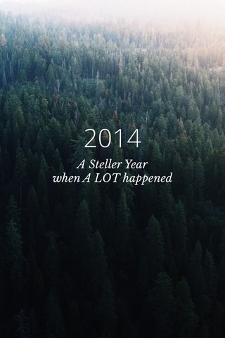 2014 A Steller Year when A LOT happened