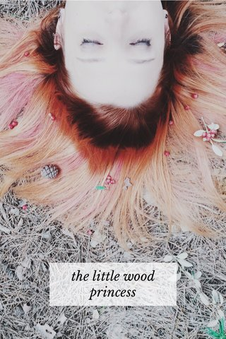 the little wood princess
