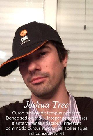 Joshua Tree Curabitur blandit tempus porttitor. Donec sed odio dui. Integer posuere erat a ante venenatis dapibus. Praesent commodo cursus magna, vel scelerisque nisl consectetur et.