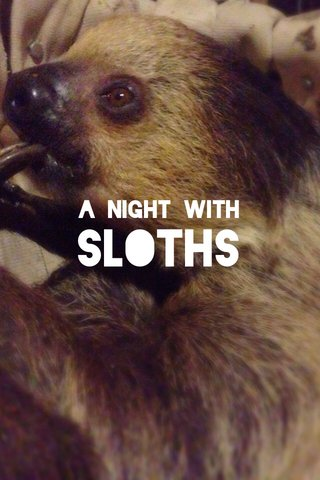 SLOTHS A Night With