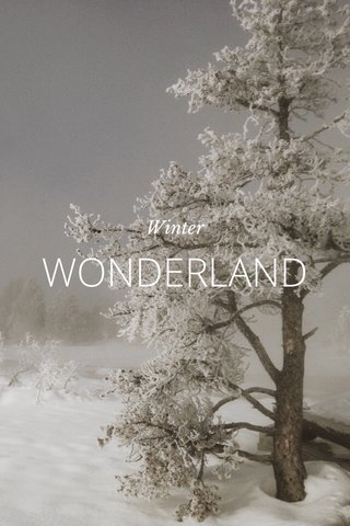 WONDERLAND Winter
