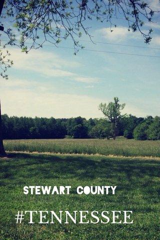 #TENNESSEE Stewart County