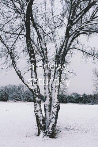 a snowy saturday