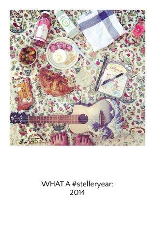 WHAT A #stelleryear: 2014
