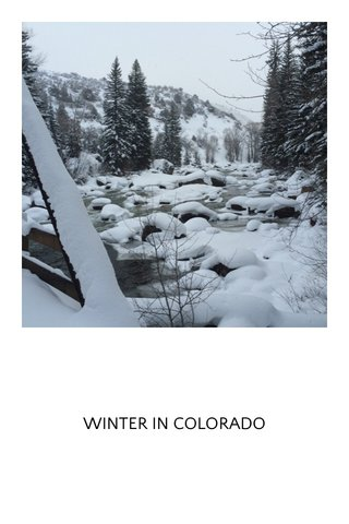 WINTER IN COLORADO