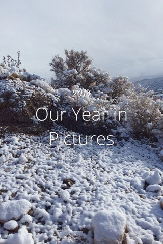 Our Year in Pictures 2014