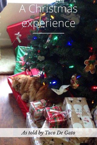 A Christmas experience As told by Taco De Gato