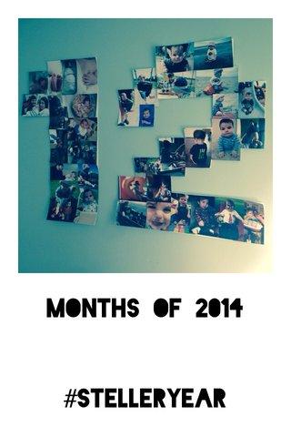 MONTHS OF 2014 #stelleryear