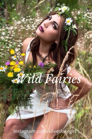 Wild Fairies Instagram.com/silverlakegirl