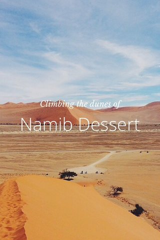 Namib Dessert Climbing the dunes of