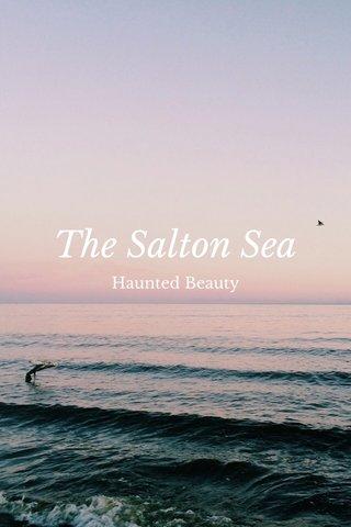 The Salton Sea Haunted Beauty