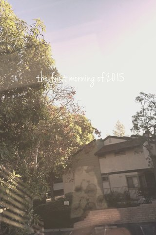 the first morning of 2015