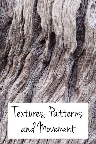 Textures, Patterns and Movement