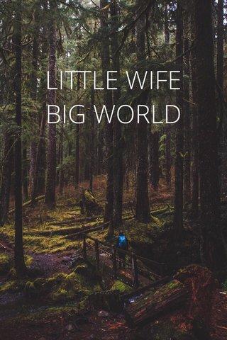LITTLE WIFE BIG WORLD