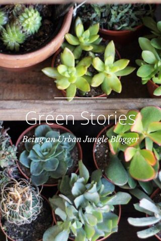 Green Stories Being an Urban Jungle Blogger