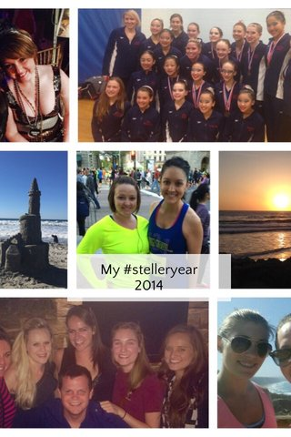 My #stelleryear 2014