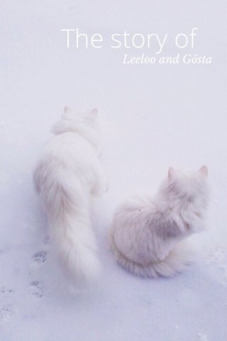 The story of Leeloo and Gösta