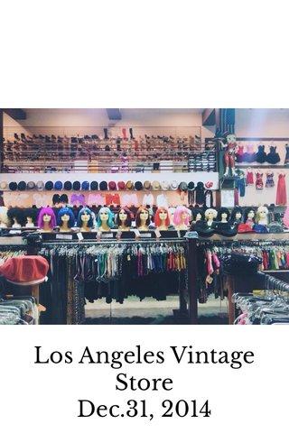 Los Angeles Vintage Store Dec.31, 2014