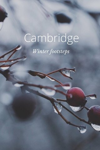 Cambridge Winter footsteps
