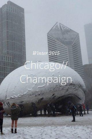 Chicago//Champaign Winter 2015