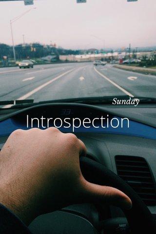 Introspection Sunday