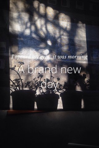 A brand new day I opened my eyes...it was morning