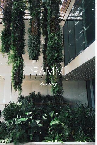 PAMM Sunday