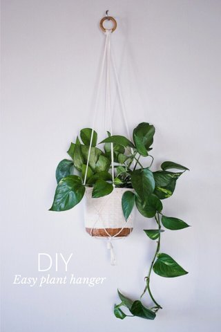 DIY Easy plant hanger
