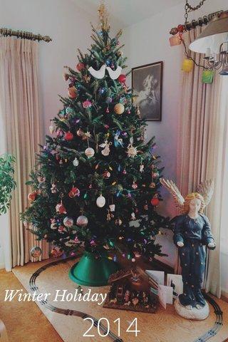 2014 Winter Holiday