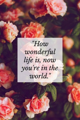 """""""How wonderful life is, now you're in the world."""""""