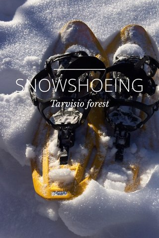 SNOWSHOEING Tarvisio forest